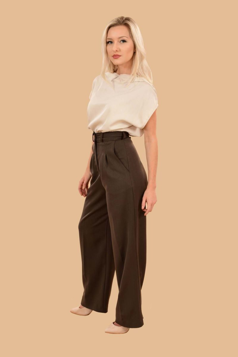 Rita Pleated High Waist Front Zip Wide Leg Dress Pants Brown